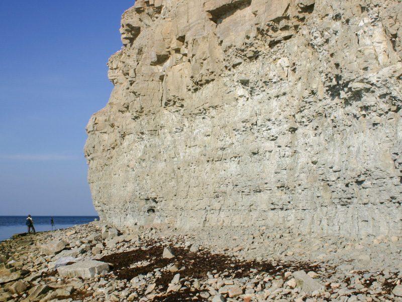 Panga Cliff (Silur) - Foto Ulrike Wizisk